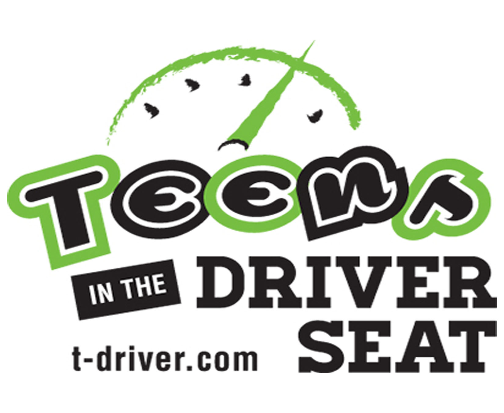 Teens in the Driver Seat Logo